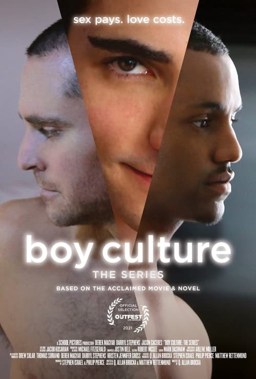 Boy Culture: The Series